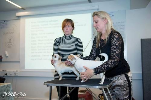 Dorthe Lind-Rasmussen & Jeanette A. Bengtsen